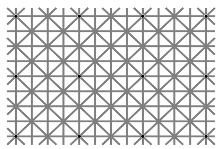 GridIllusion.png